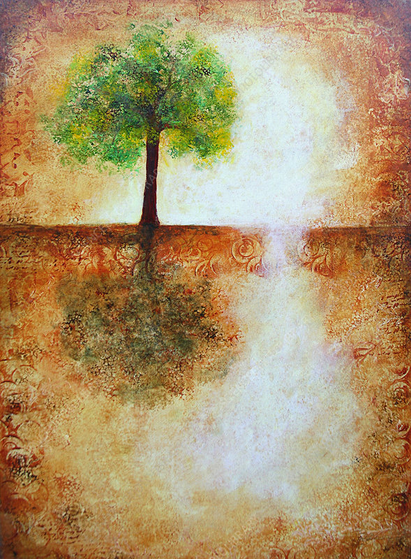 Single tree in abstract landscape, illustration