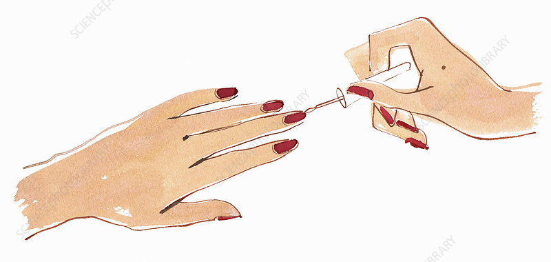 Close up hands of woman, illustration