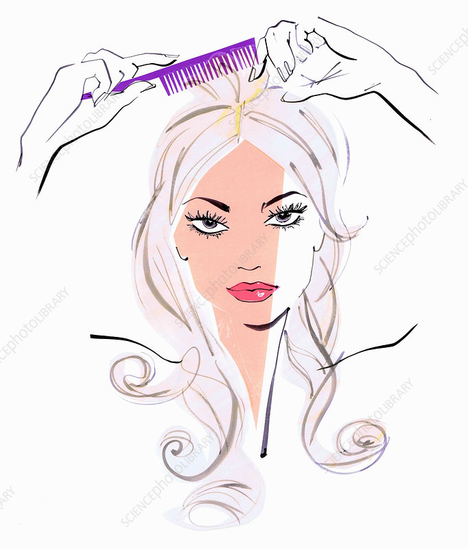 Beautiful woman combing hair, illustration