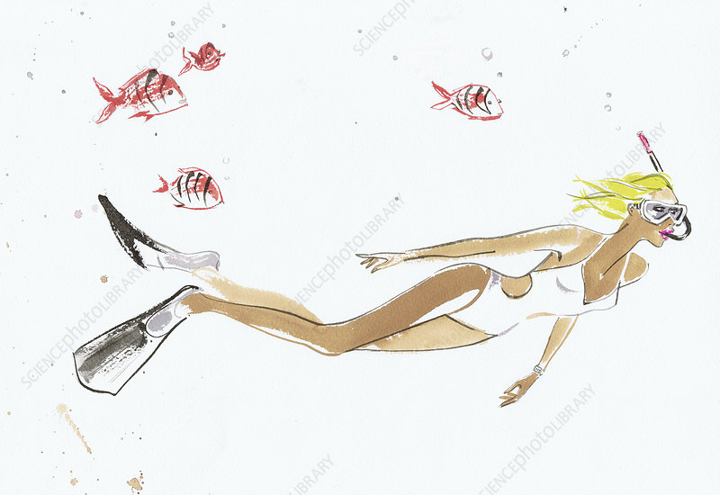 Young woman snorkelling underwater, illustration
