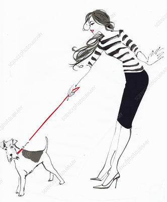 Wire fox terrier and fashionable woman, illustration
