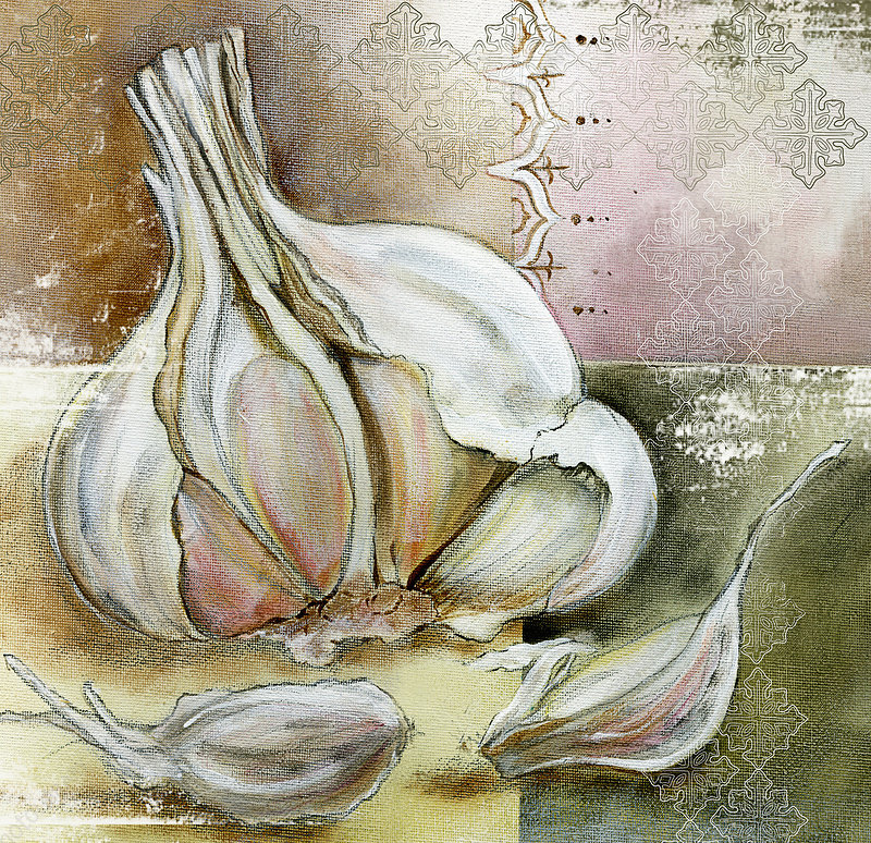 Garlic bulb, illustration