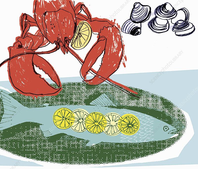Lobster, fish and shellfish, illustration