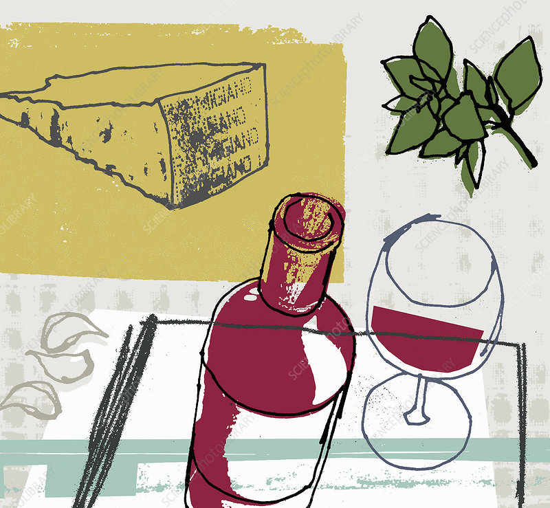 Red wine and slice of parmesan cheese, illustration
