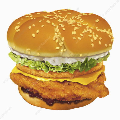 Large chicken burger, illustration
