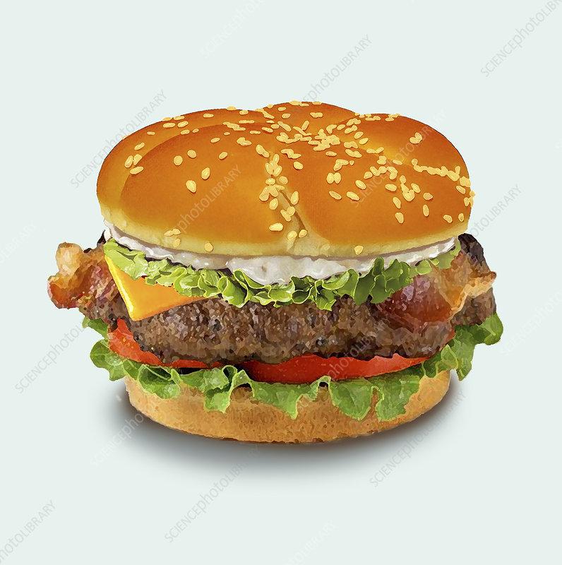 Cheeseburger, illustration