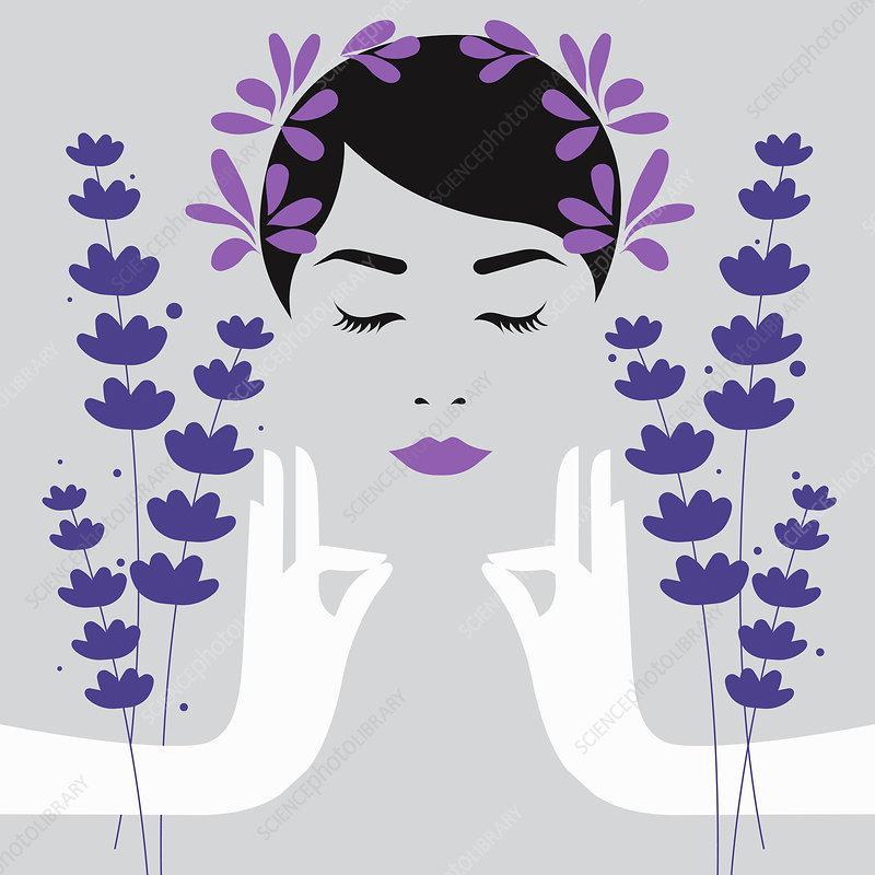 Woman meditating with lavender aromatherapy, illustration