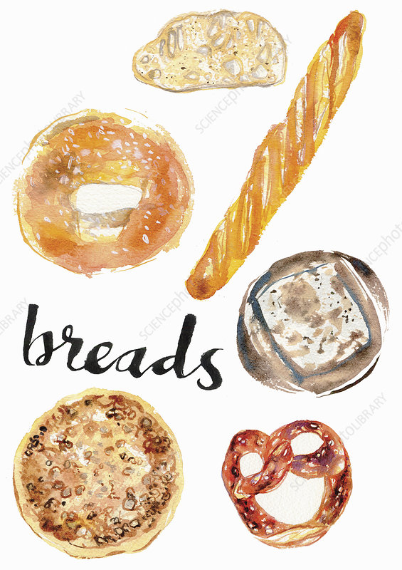 Different breads, illustration