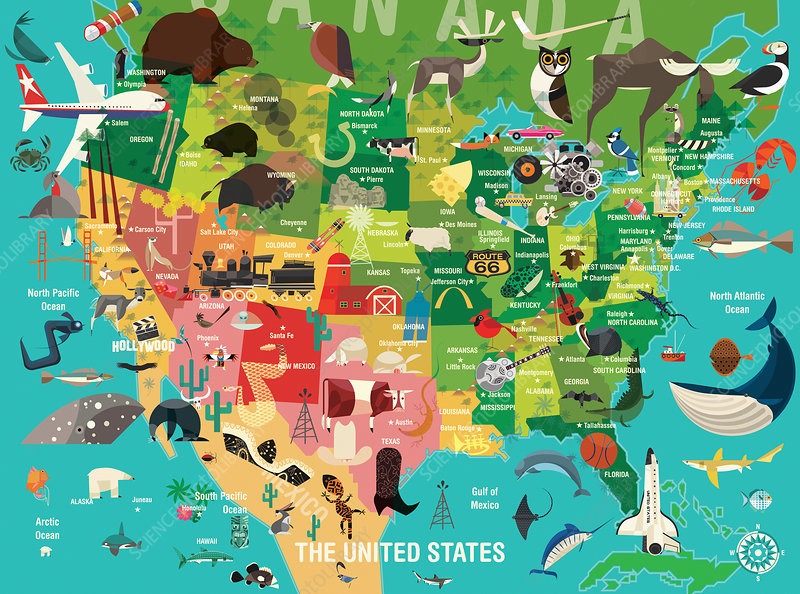 Map of the United States, illustration