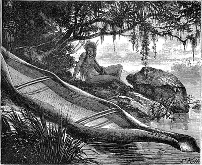 Bark canoe in the Amazon, 19th century