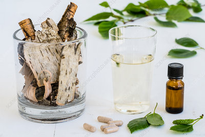 Birch essential oil and juice