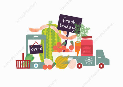 Home delivery of fresh food, illustration