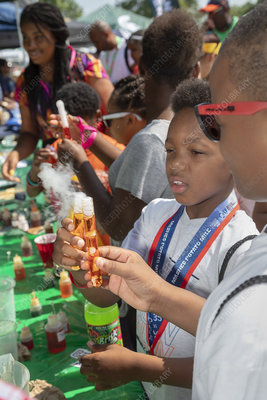 Metro Detroit Youth Day, USA