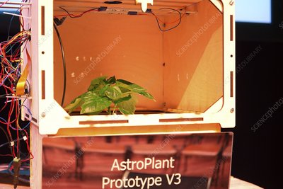 AstroPlant desktop greenhouse space research