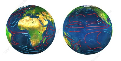 Global ocean currents, illustration