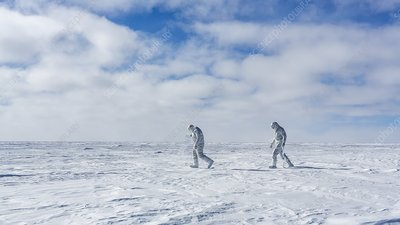 Scientific researchers in Antarctica