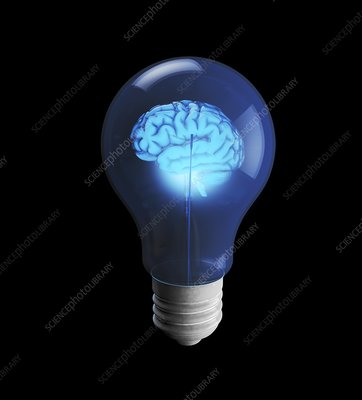 Brain power and light bulb, conceptual image
