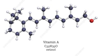 Molecular model of retinol