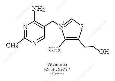 Molecular structure of vitamin B1