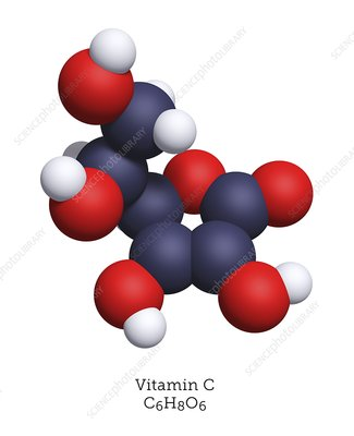 Molecular model of vitamin C