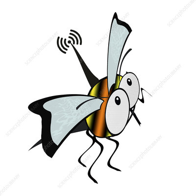 Flying insect with antenna