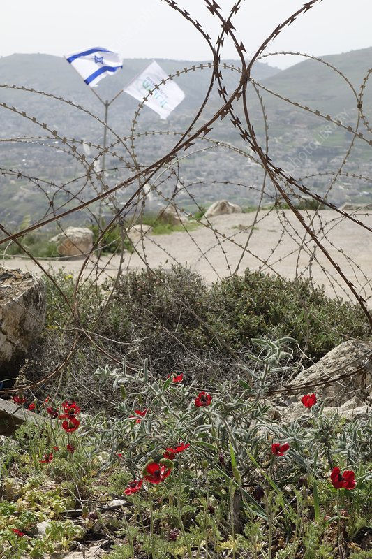 Occupied territory, West Bank