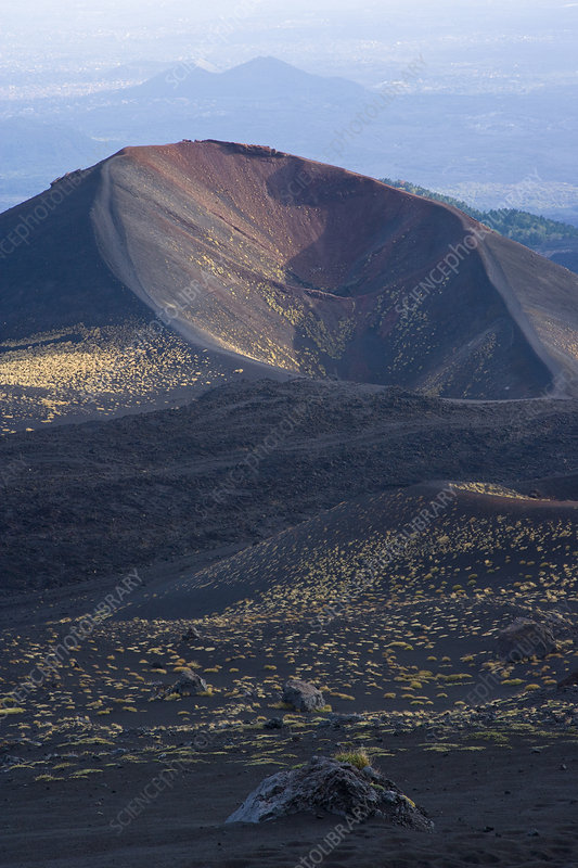 Mount Etna, with vegetation, Sicily, Italy