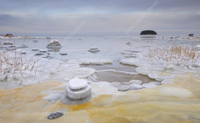 Baltic sea freezing up along the northern coast of Estonia