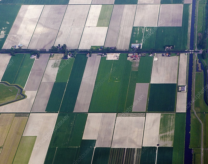 Aerial view of Patchwork landscape of field, The Netherlands