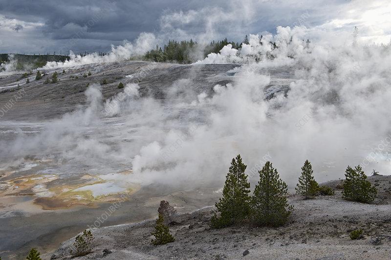 Geyser, Yellowstone National Park, Wyoming, USA