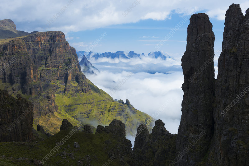 Misty morning in the Drakensberg, South Africa