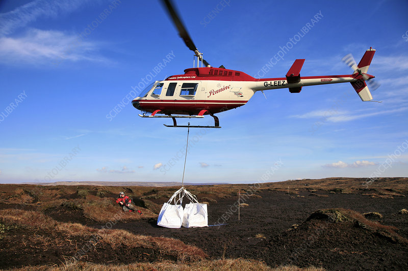 Helicopter dropping load of heather brash onto moorland