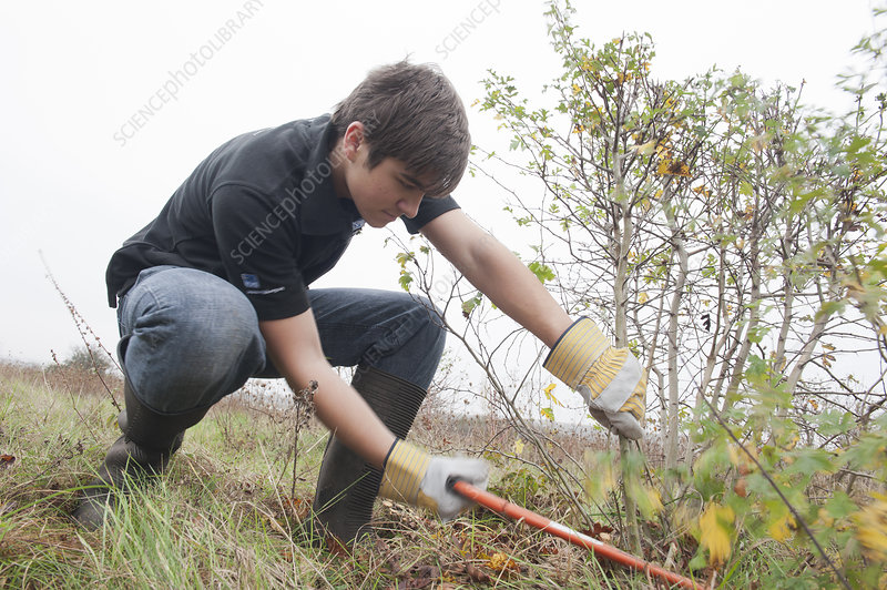 Young volunteers clearing scrub