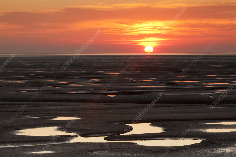 Sunset reflected from mudflats