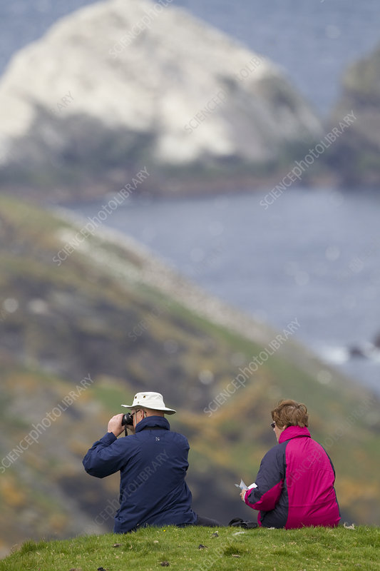 People watching Gannet colony