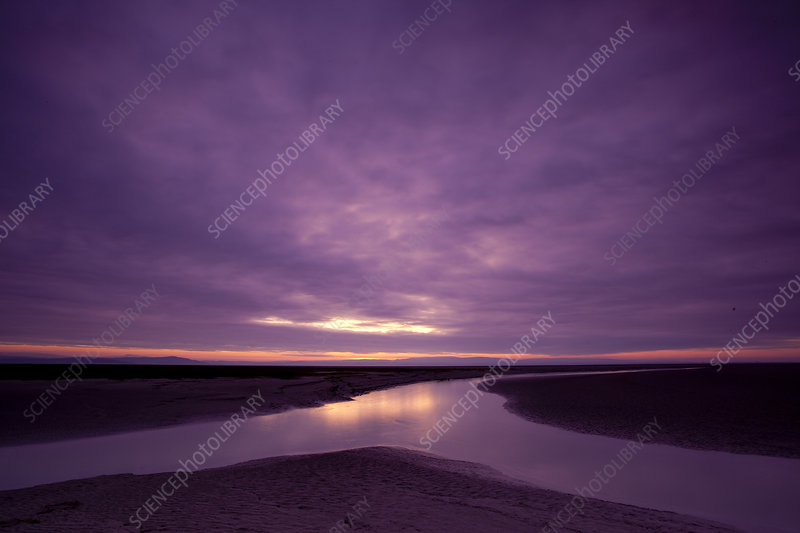 Estuarine river inlet running across mudflats at dawn