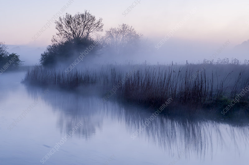 River Stour with early morning mist and frost, Dorset, UK