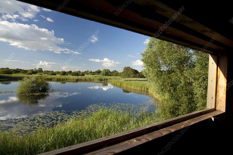 View through window of birdwatching hide