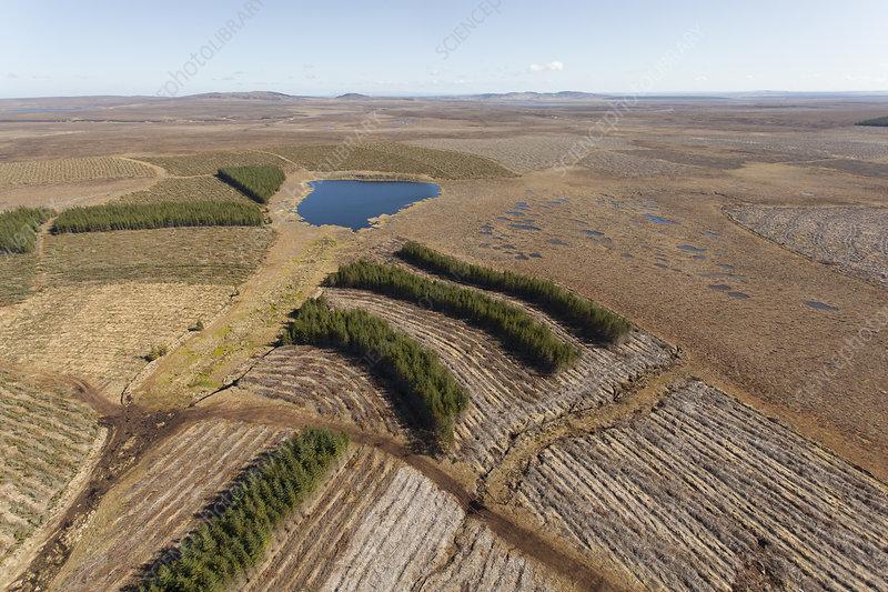 Aerial view of Forsinard Flows blanket bog