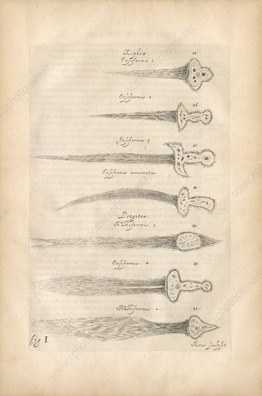 Types of comets, illustration 1668