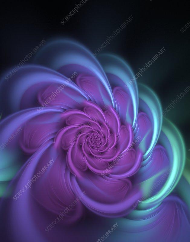Fractal generated roseate spirals