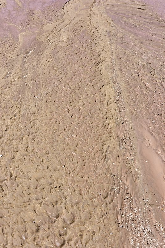 Arizona streambed after a flash flood