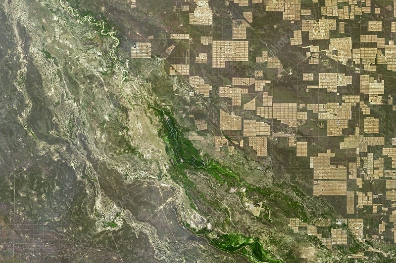 Deforestation in Paraguay, satellite image