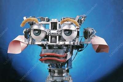 Kismet robot - Stock Image - T280/0048 - Science Photo Library
