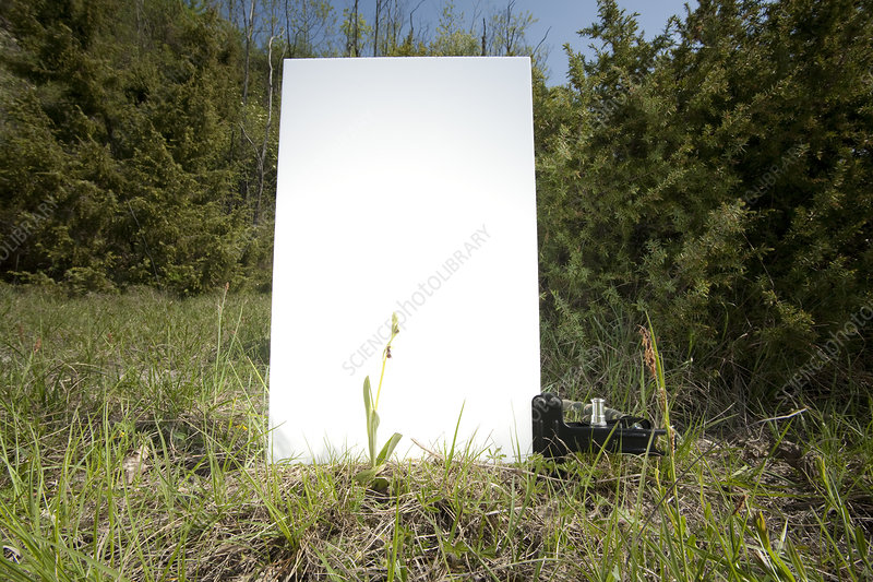Field studio for photography