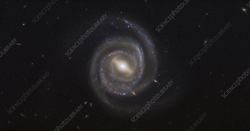 Barred spiral galaxy UGC 6093, HST image