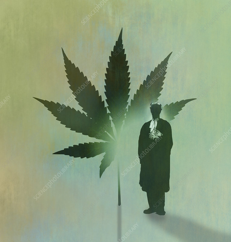 Barrister and cannabis leaf, illustration
