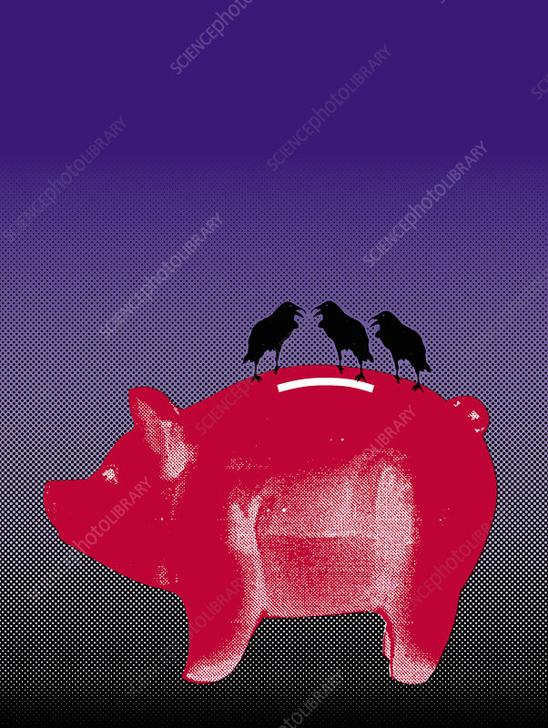Three black crows on piggy bank, illustration