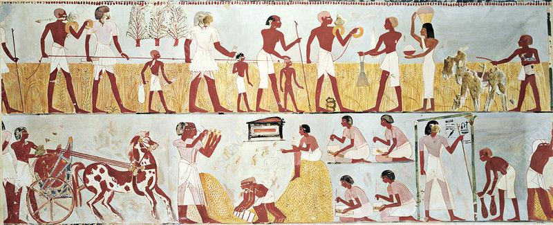 Egyptian tomb scenes, illustration