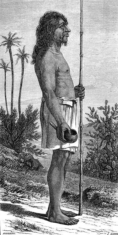 19th Century Payagua warrior, illustration